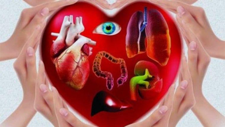 Canlıdan organ naklinde gelişme