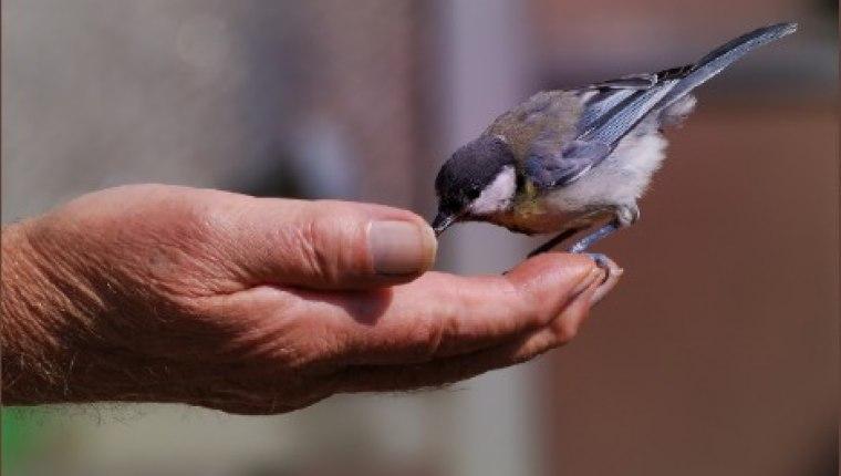 Merhamet, yorulmayı göze alabilmektir